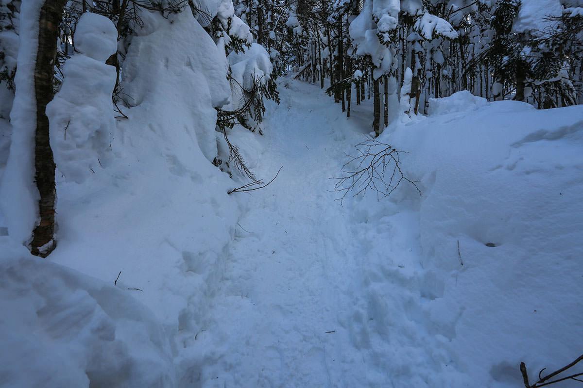 【縞枯山 北八ヶ岳ロープウェイ】登山百景-斜面がキツくなっていく