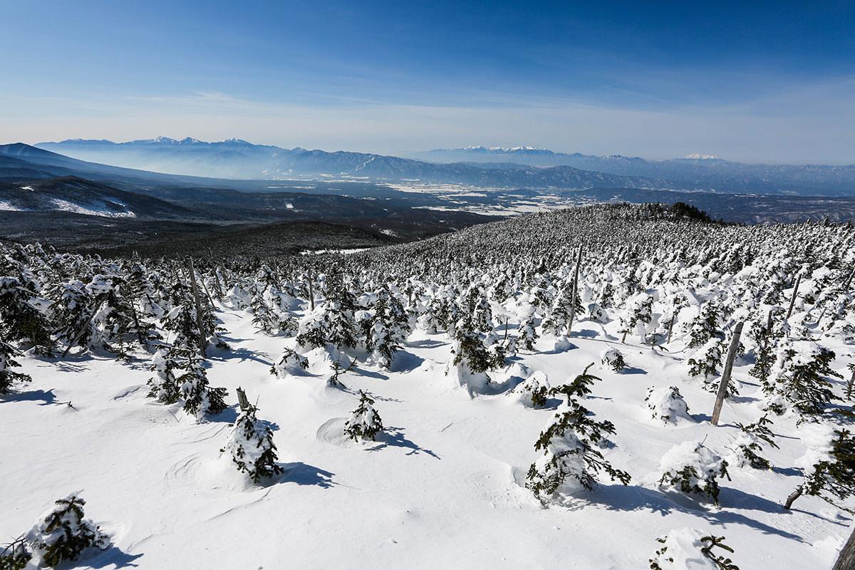【縞枯山 北八ヶ岳ロープウェイ】登山百景-南アルプスと中央アルプス