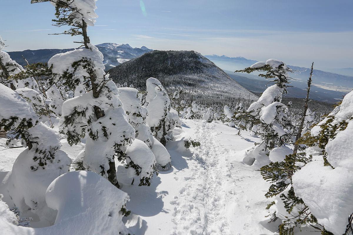 【縞枯山 北八ヶ岳ロープウェイ】登山百景-茶臼山へ下りていく