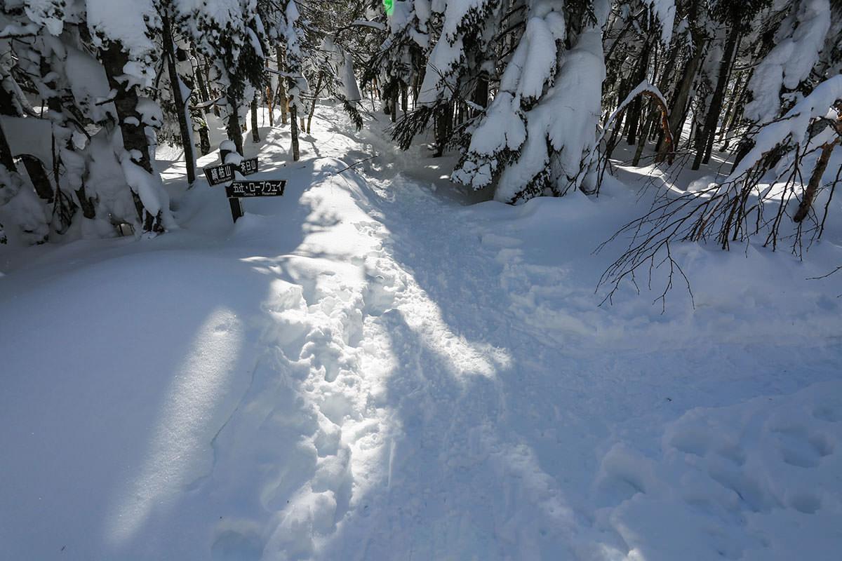 【縞枯山 北八ヶ岳ロープウェイ】登山百景-茶臼山の分岐点