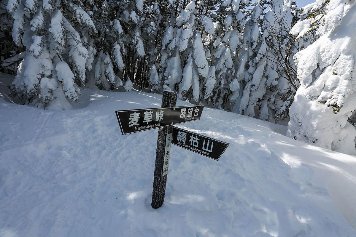 【縞枯山 北八ヶ岳ロープウェイ】登山百景-茶臼山に着いた