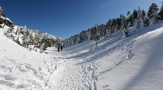 縞枯山 北八ヶ岳ロープウェイ