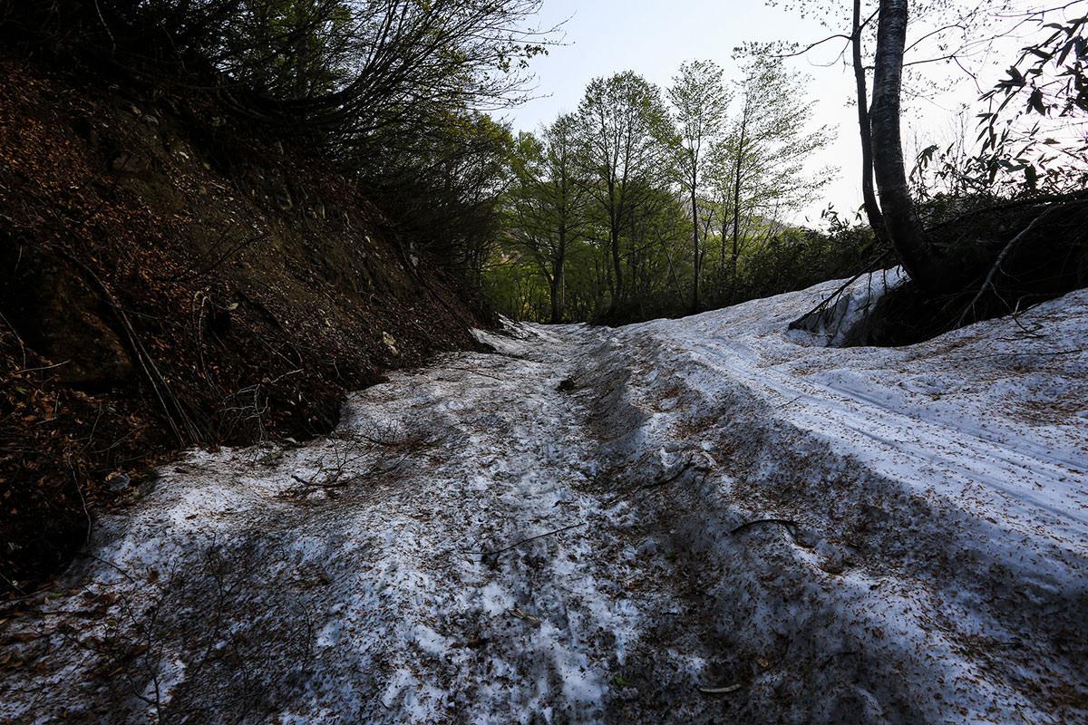 最初から雪の登山道