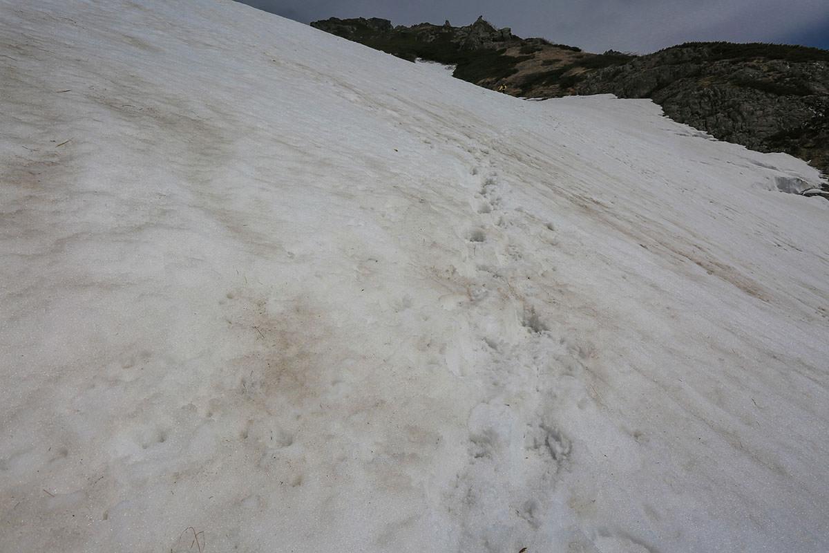 難所の大雪渓トラバース