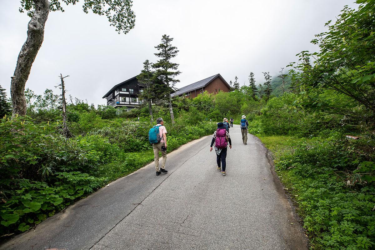 【白馬岳 栂池自然園】登山百景-登山口まで歩く