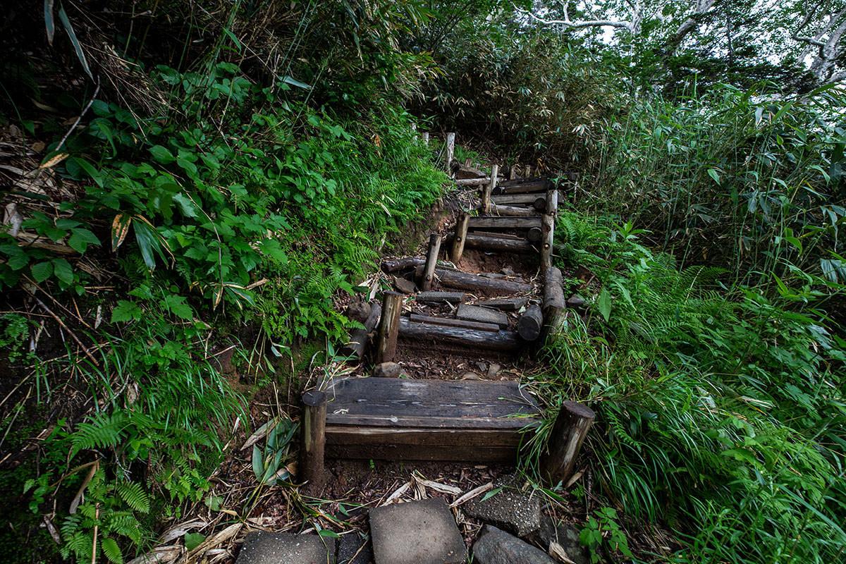 【白馬岳 栂池自然園】登山百景-木段が滑りそう