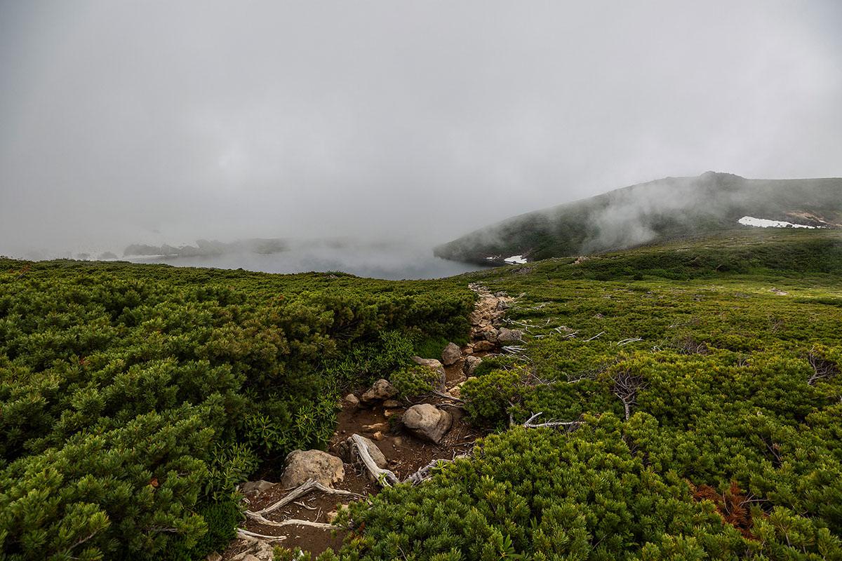 【白馬岳 栂池自然園】登山百景-白馬乗鞍岳から大池を眺める
