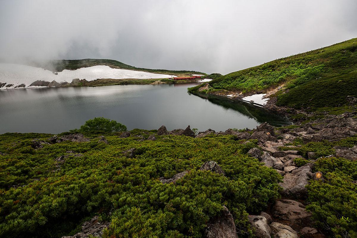 【白馬岳 栂池自然園】登山百景-畔を歩くような登山道