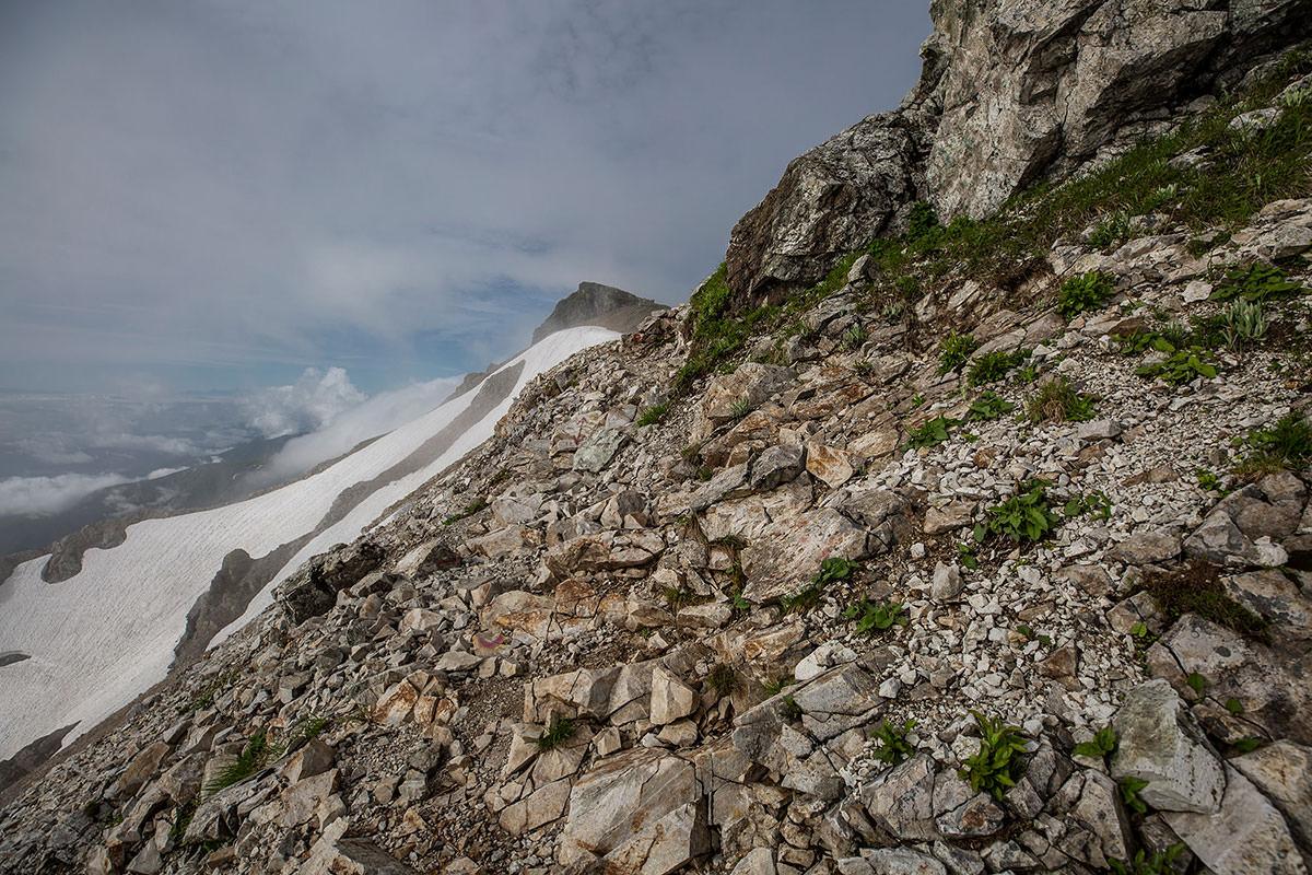 【白馬岳 栂池自然園】登山百景-山頂・・・だと思ってたアレ