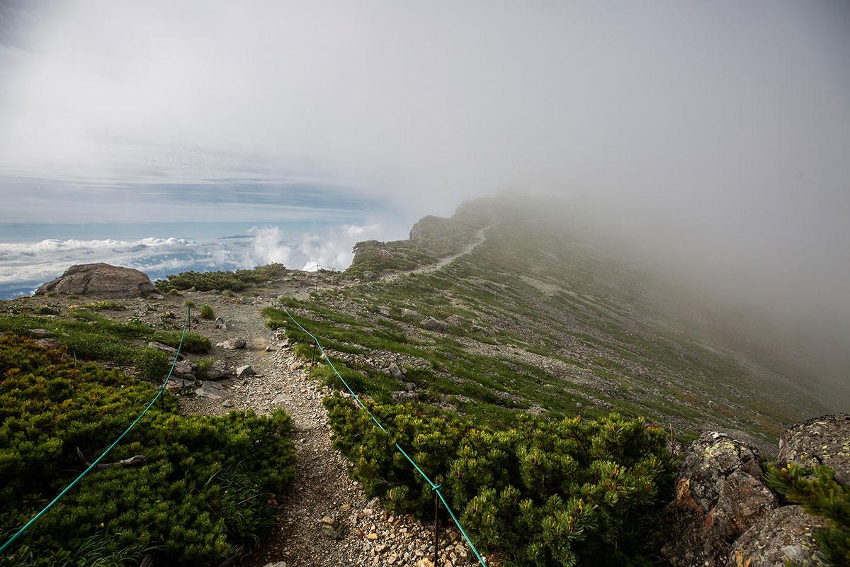 【白馬岳 栂池自然園】登山百景-平坦な先へ