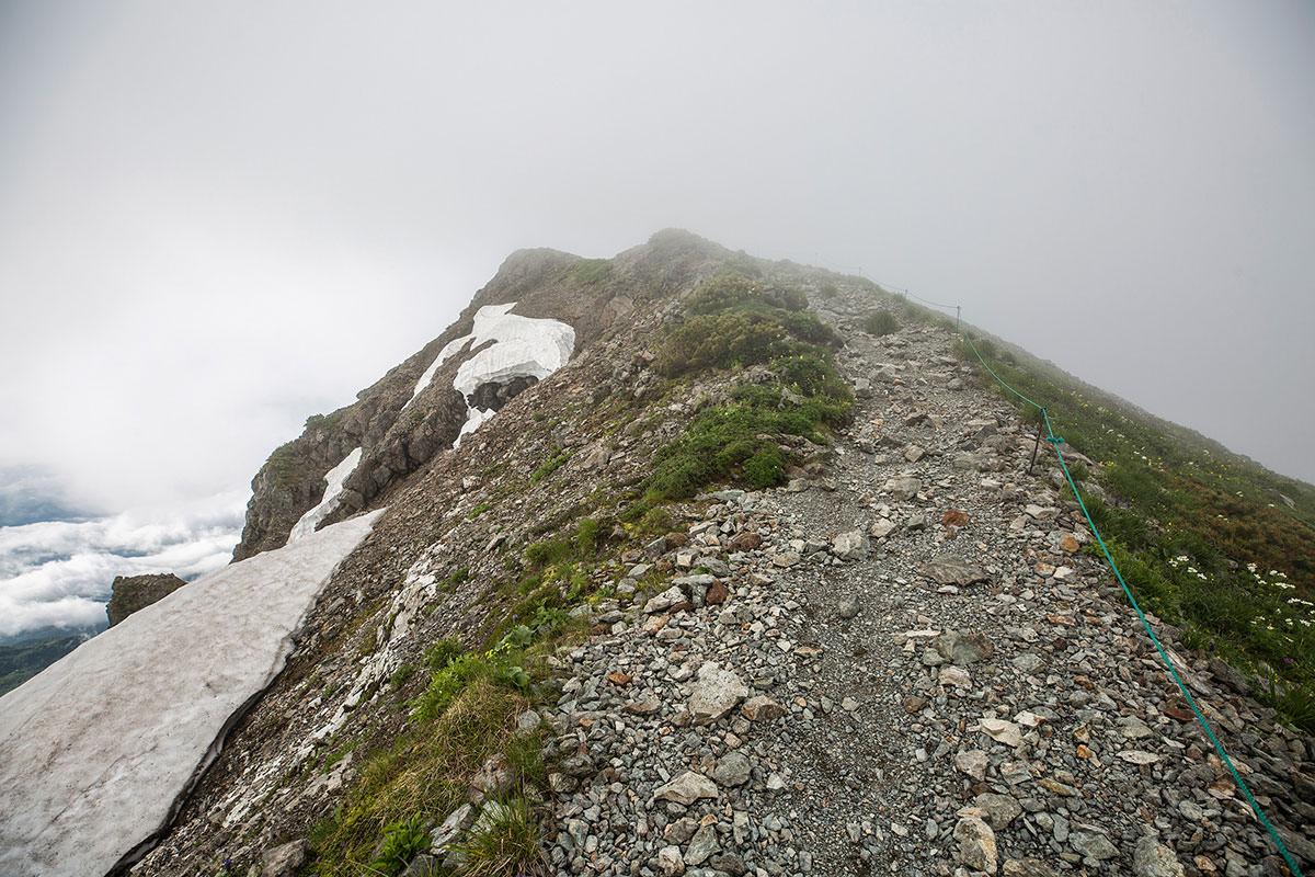 【白馬岳 栂池自然園】登山百景-今度こそ山頂