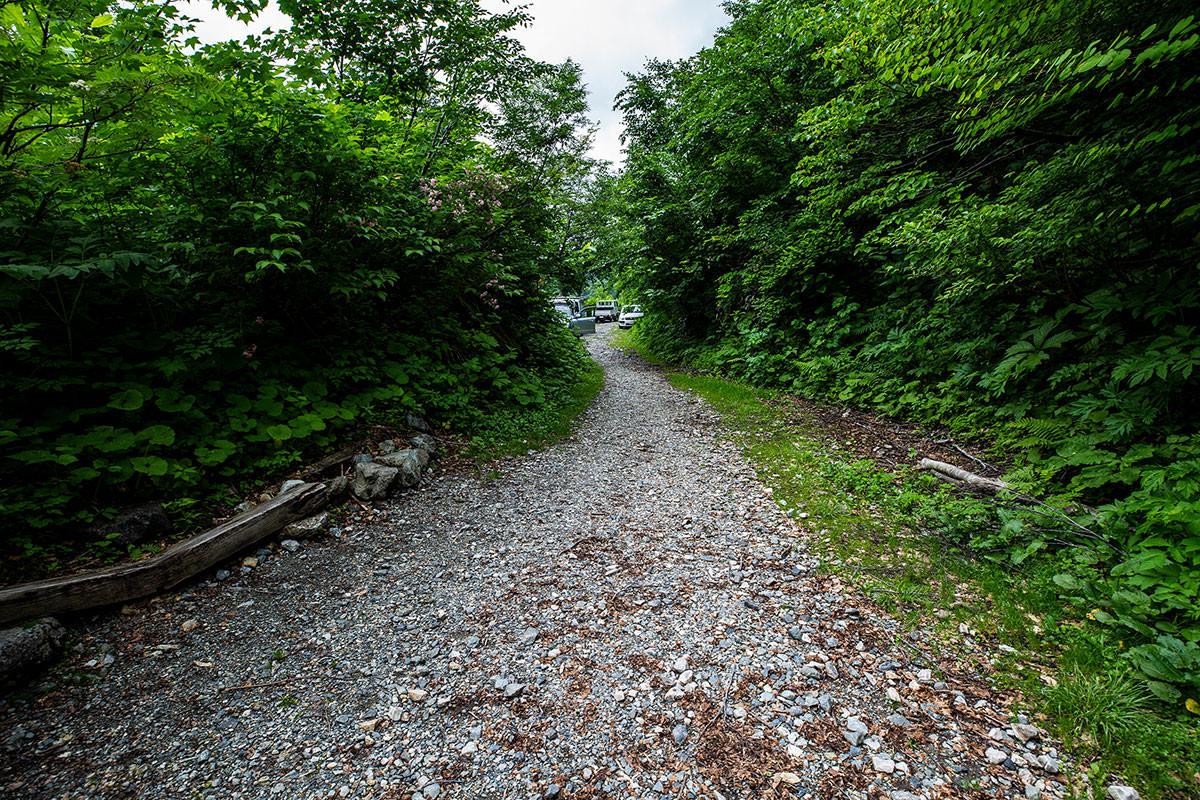 【白馬岳 栂池自然園】登山百景-林道に出た