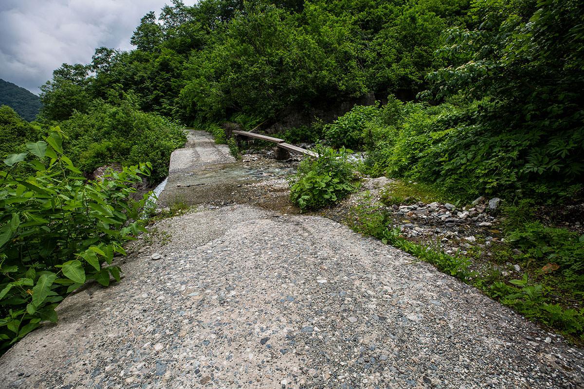 【白馬岳 栂池自然園】登山百景-広くて歩きやすい