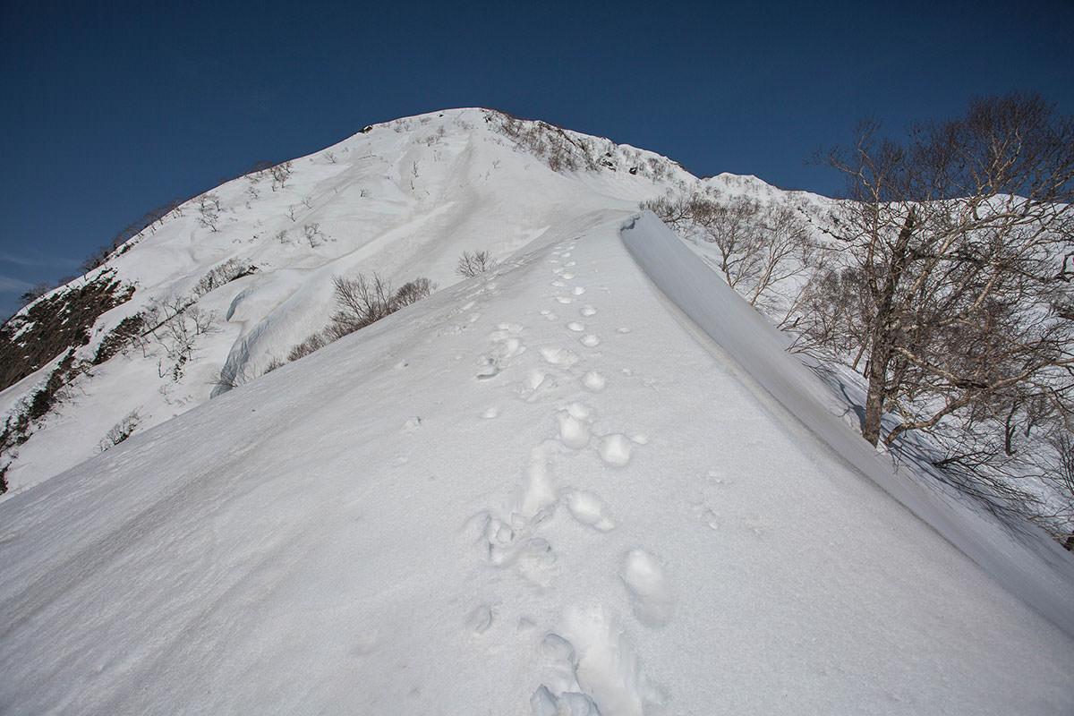 山頂の取り付きはそこ