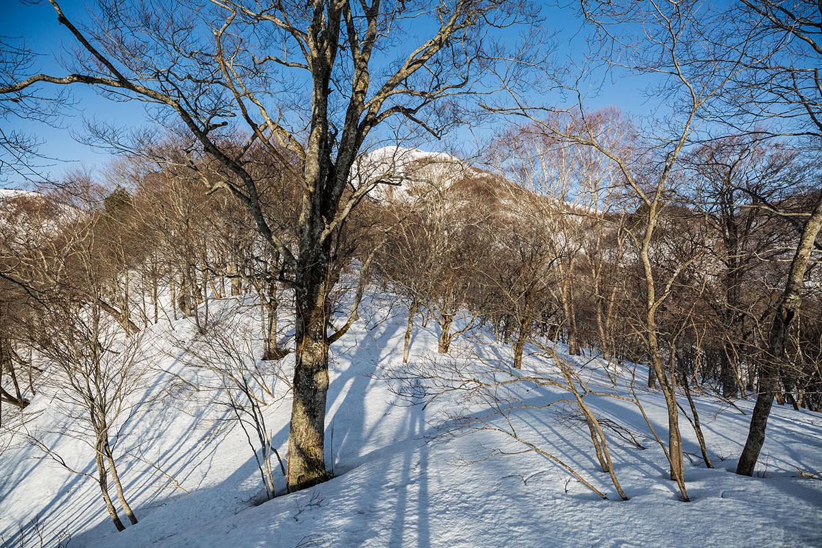 【高妻山 弥勒尾根新道】登山百景-急登を終えると五地蔵山がうっすら