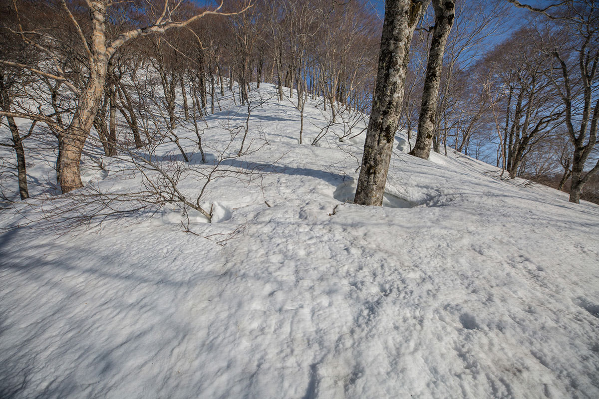 【高妻山 弥勒尾根新道】登山百景-急な登り返し