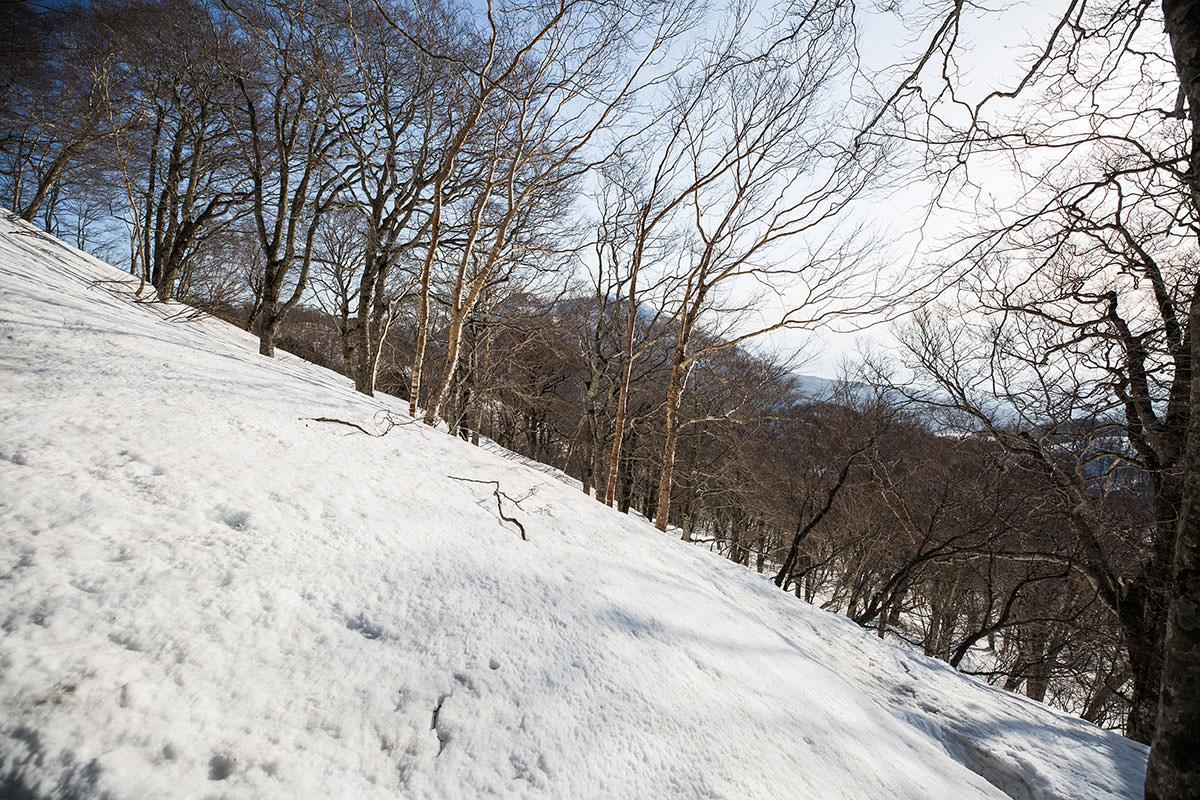 【高妻山 弥勒尾根新道】登山百景-枝の向こうに黒姫山