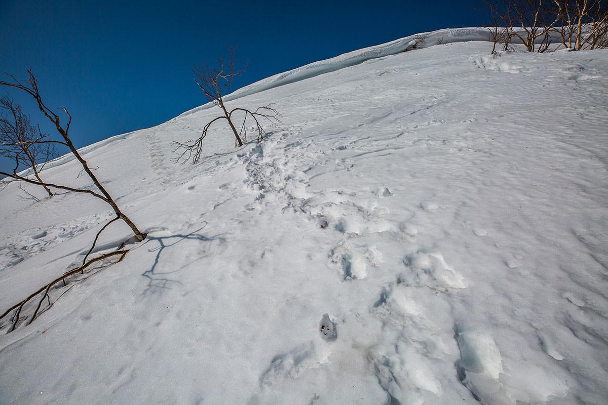 【高妻山】登山百景-急登の終わり