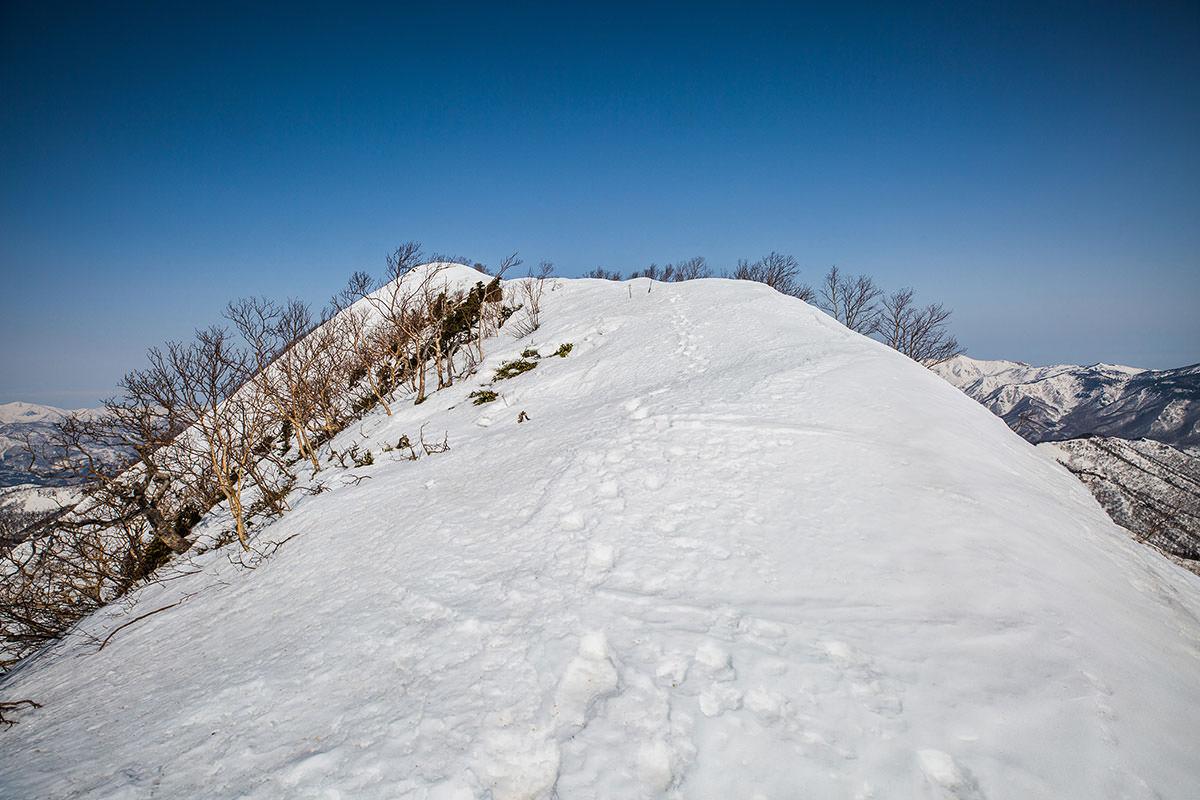 【高妻山 弥勒尾根新道】登山百景-山頂へのなだらかな登り