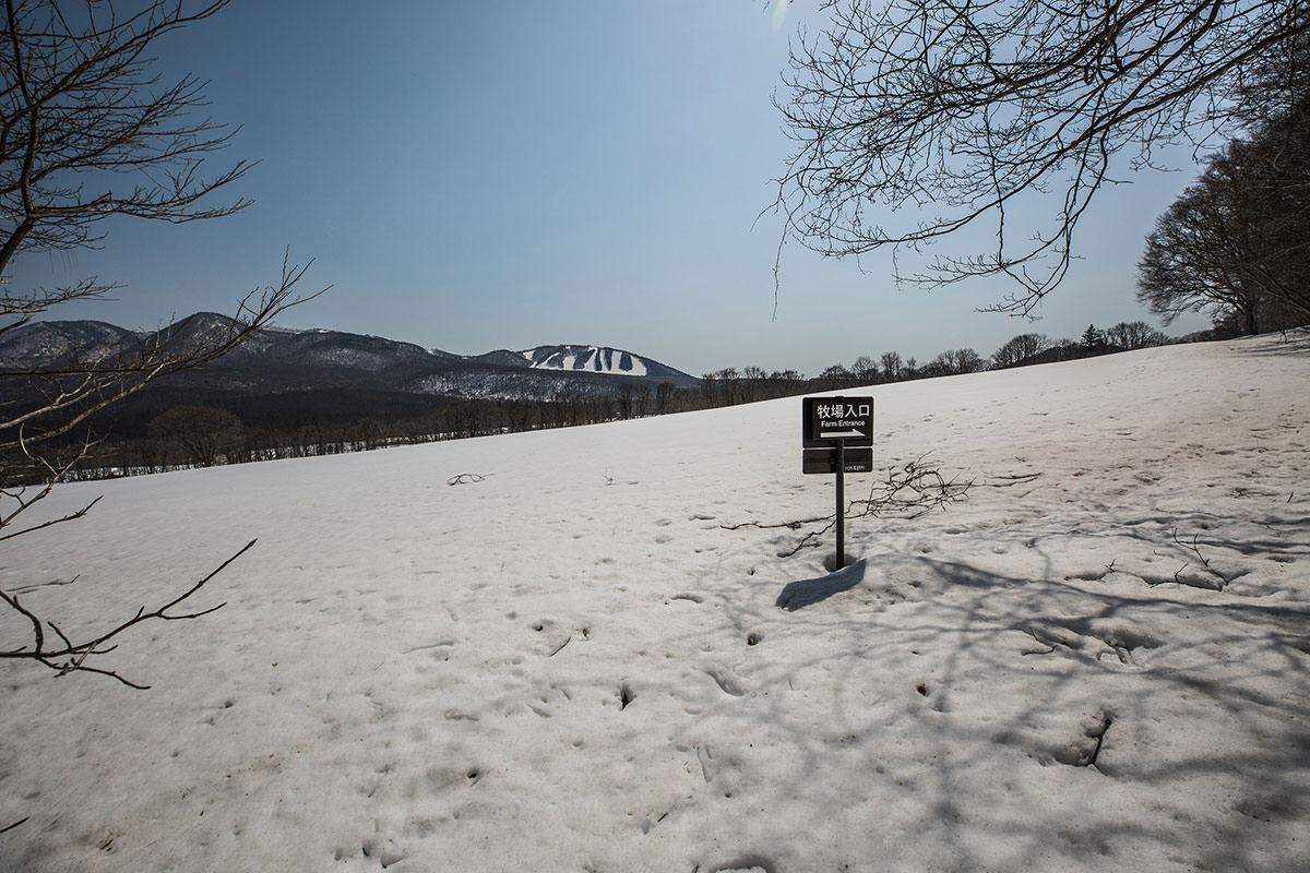 【高妻山 弥勒尾根新道】登山百景-キャンプ場到着