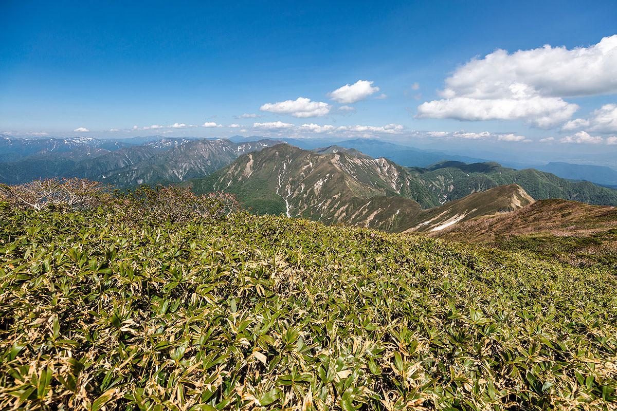 万太郎山や谷川岳の方