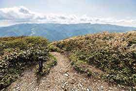 西側からの登山道