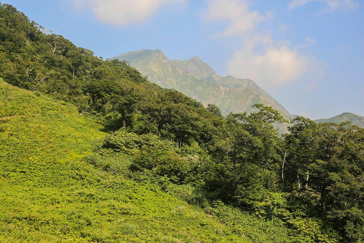 【谷川岳】登山百景-天神平到着。
