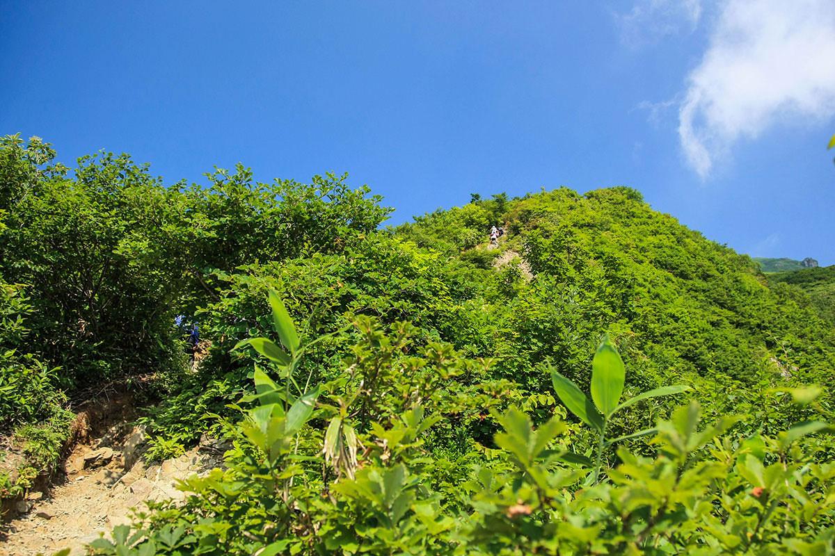 【谷川岳】登山百景-陽射しが熱い。
