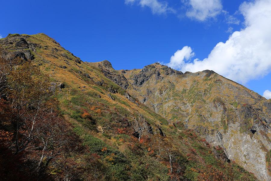 紅葉の谷川岳を厳剛新道から見上げる