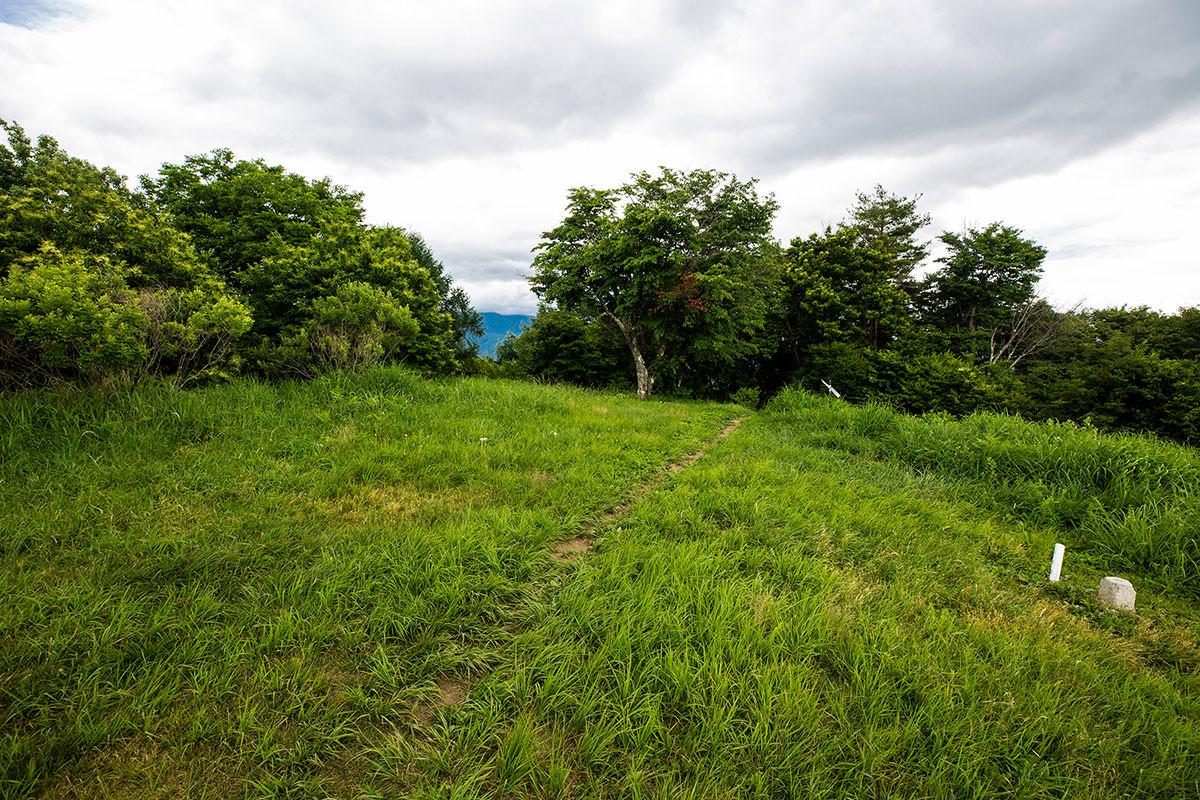 【太郎山】登山百景-南側は何も見えない