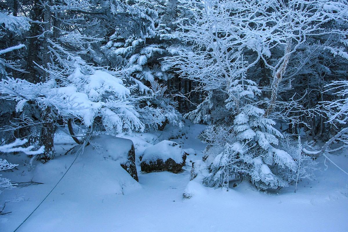 新雪の積もったルート