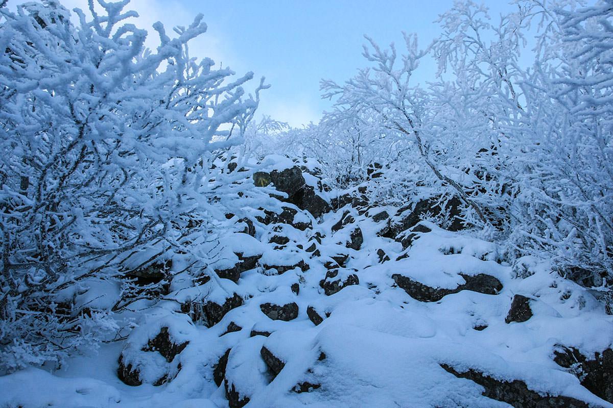 雪に囲まれ始めた