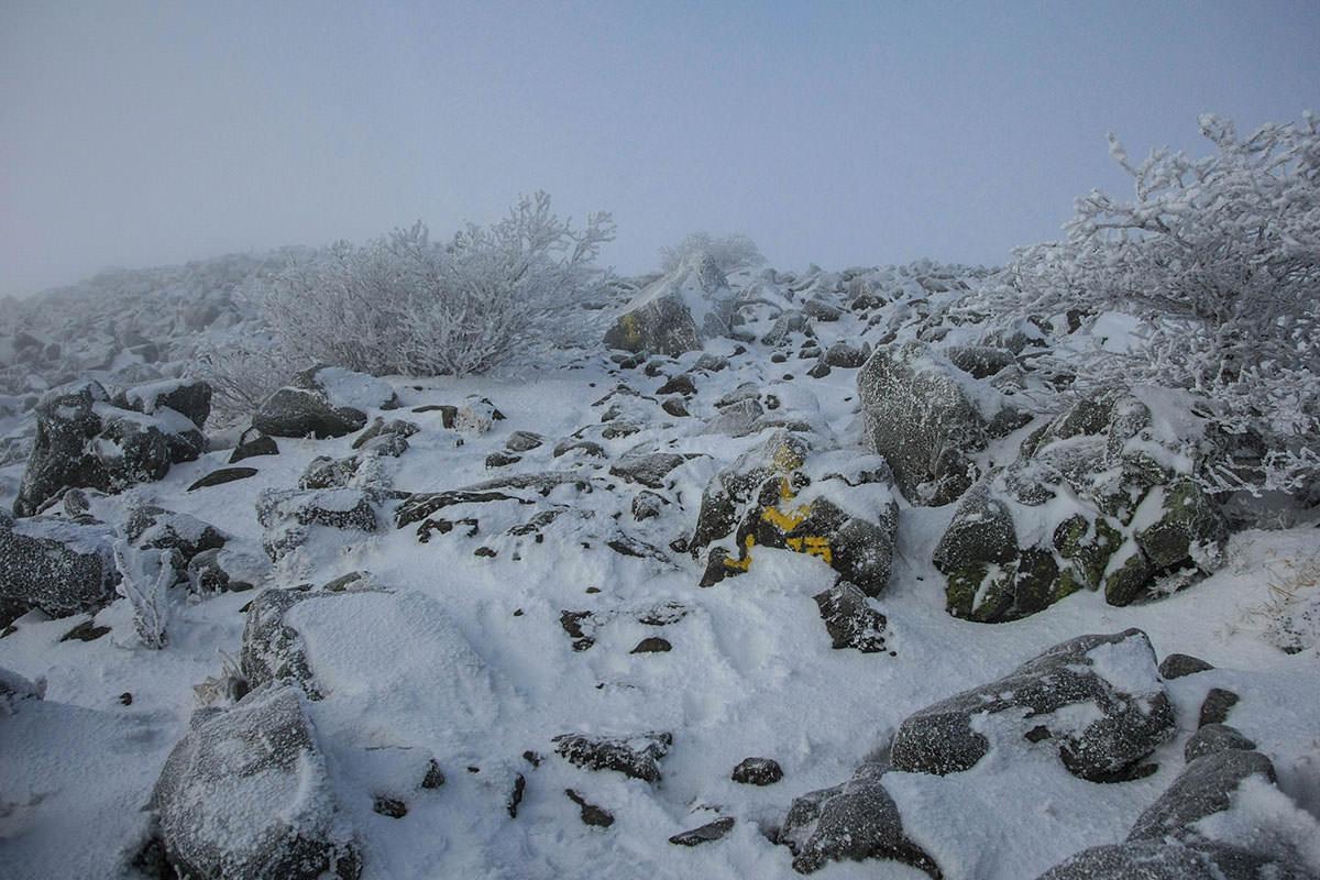 山頂までも岩の道