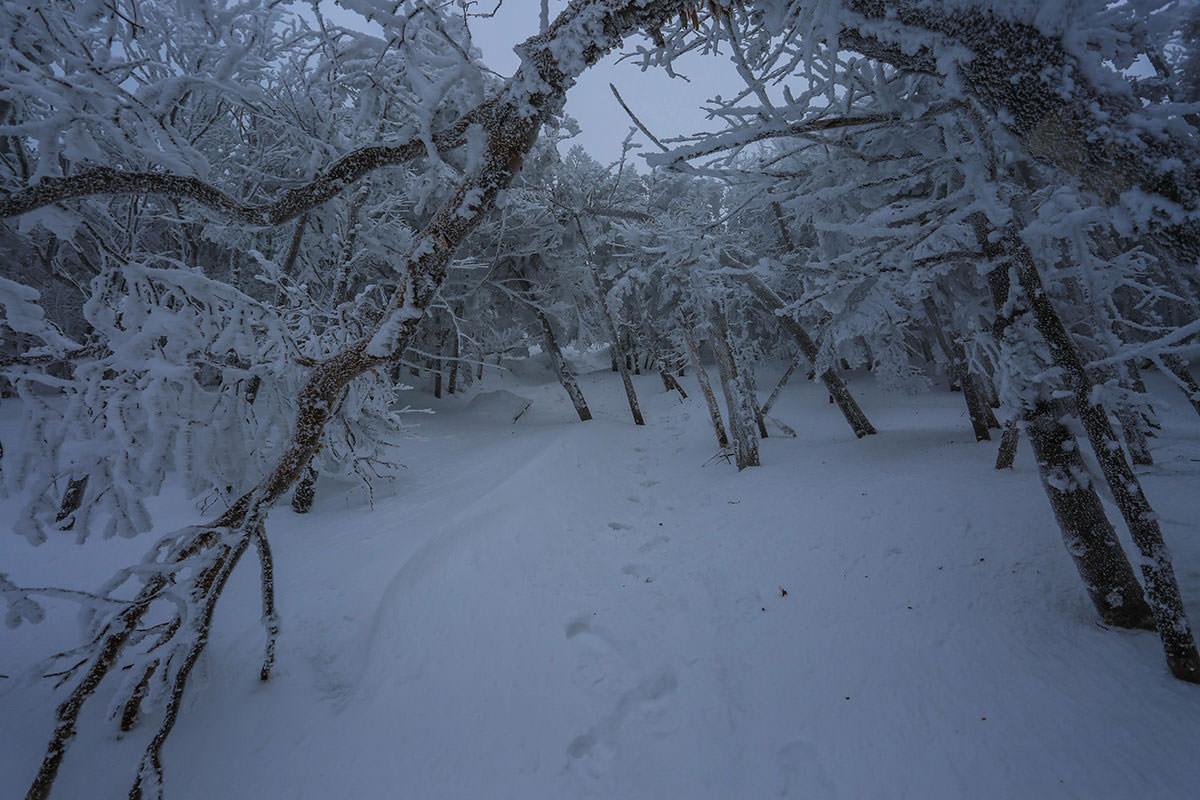 急な斜面は雪が固い