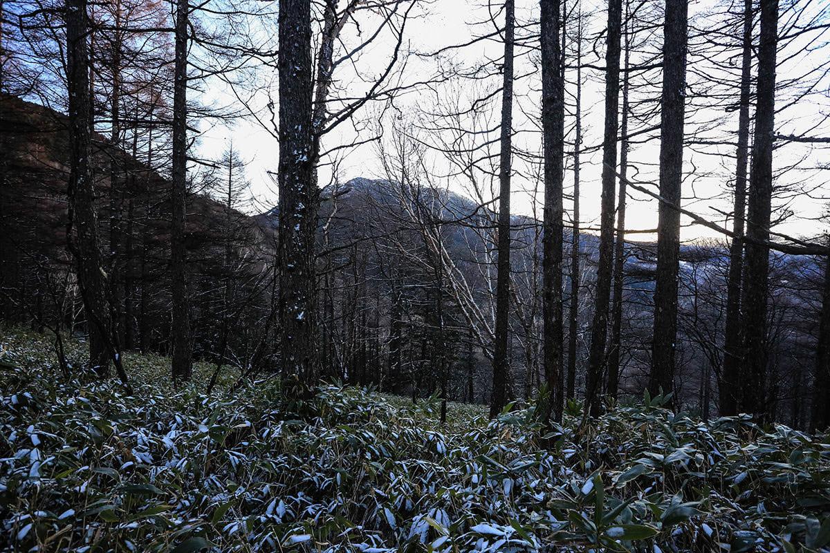 【蓼科山】登山百景-北横岳が見える