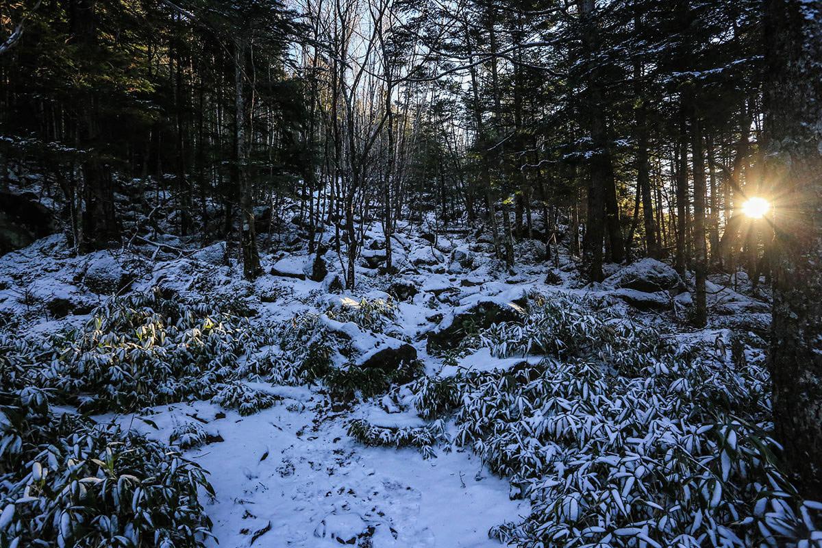 【蓼科山】登山百景-雪をかぶって滑る