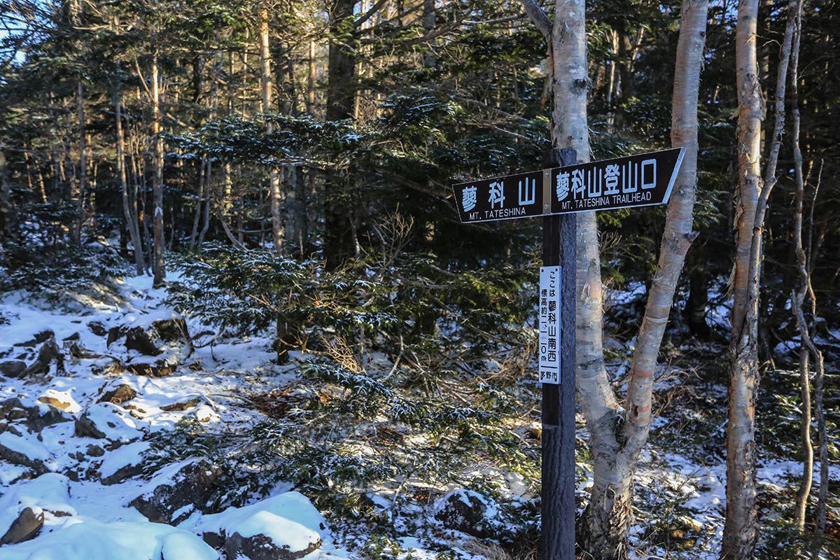 【蓼科山】登山百景-2100mを越えた