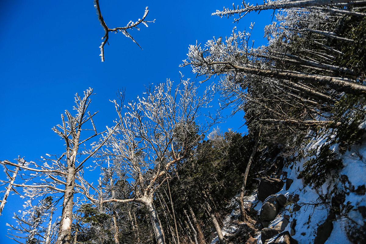【蓼科山】登山百景-急な登山道から見上げる