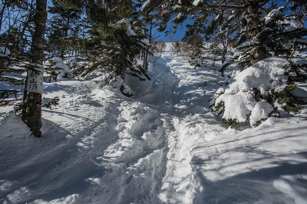 【蓼科山 竜源橋】登山百景-そこから森林限界
