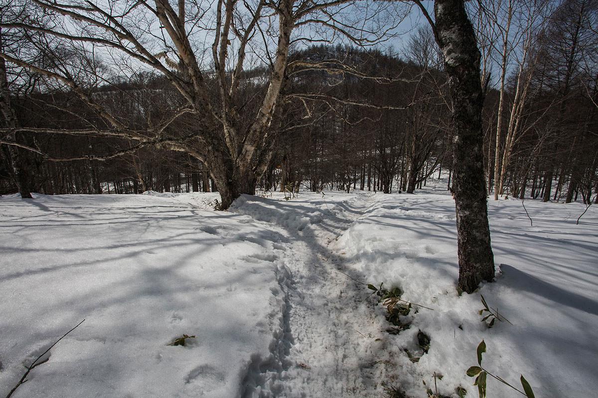 右の冬道は駐車場へ直で
