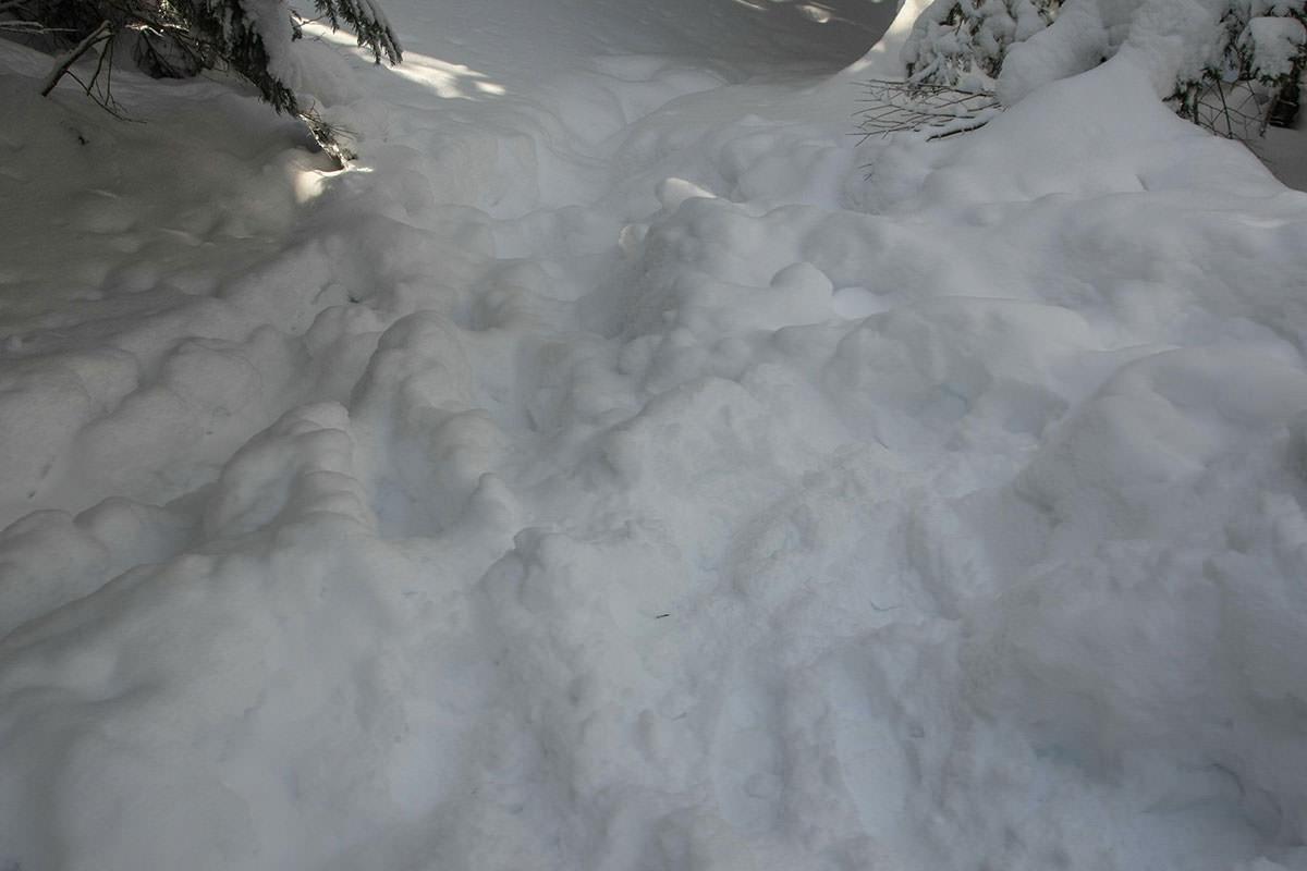 足跡は雪の下