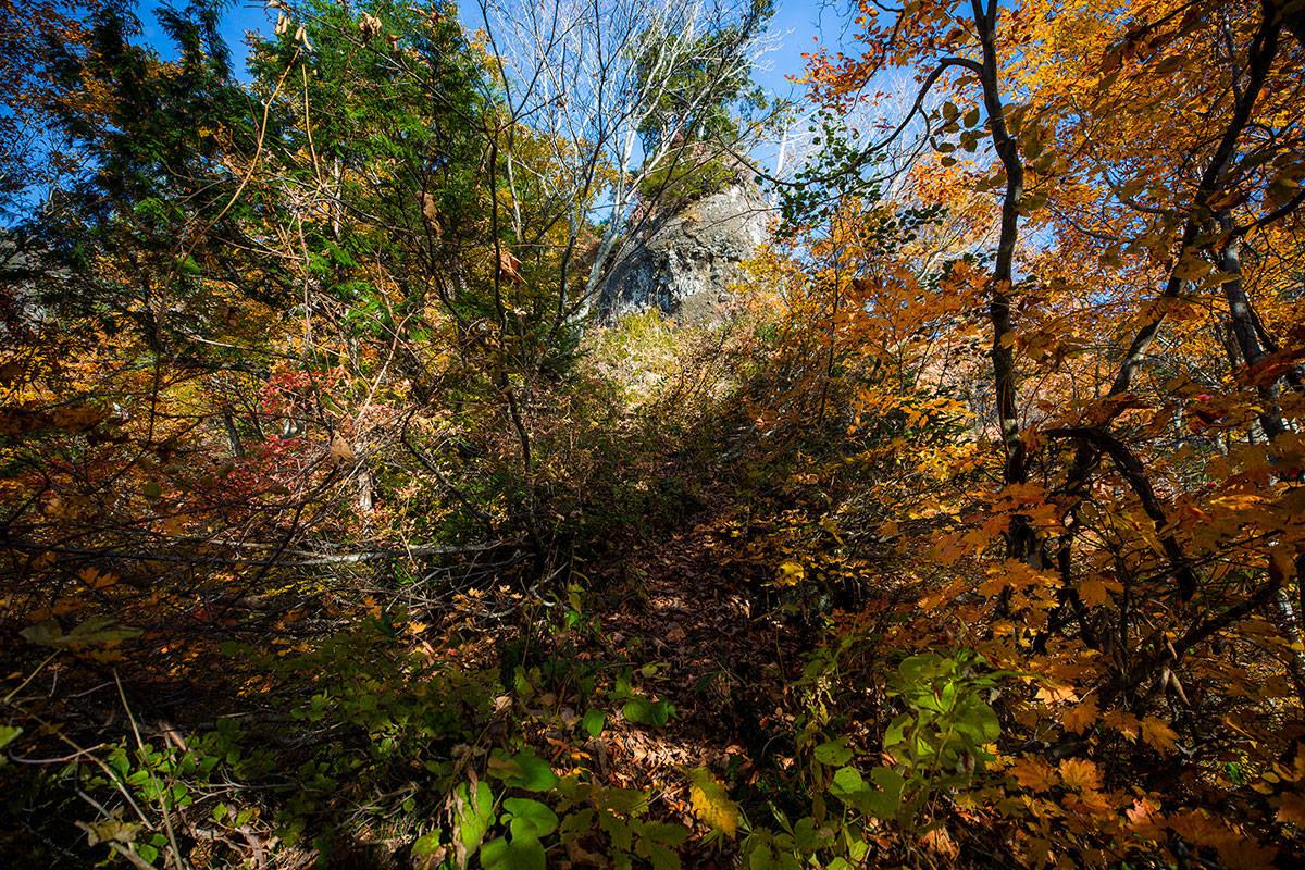 【戸隠西岳】登山百景-前に岩壁が見える