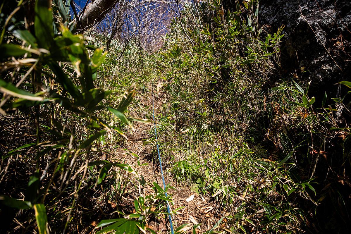 【戸隠西岳】登山百景-土の急登を登る