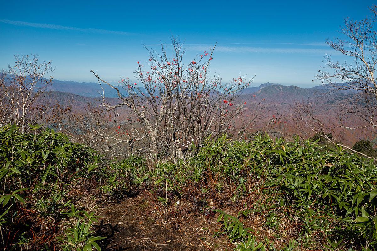 【戸隠西岳】登山百景-わりと地味
