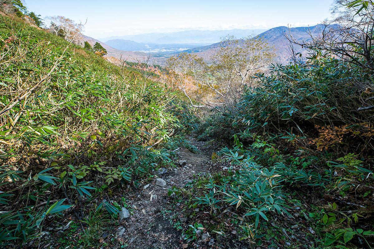 【戸隠西岳】登山百景-大洞沢を下りる