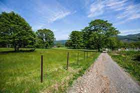 牧場を歩く
