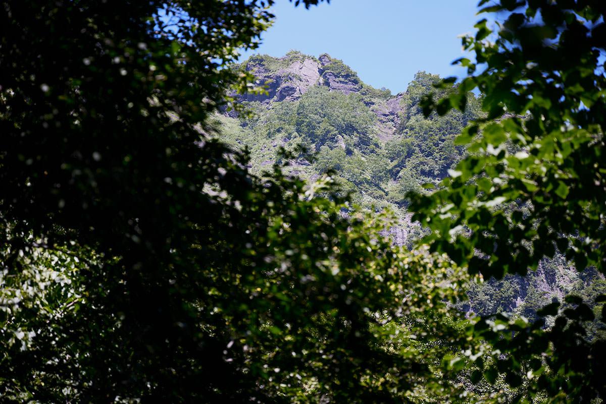 戸隠山-木の間からは稜線が間近に見える