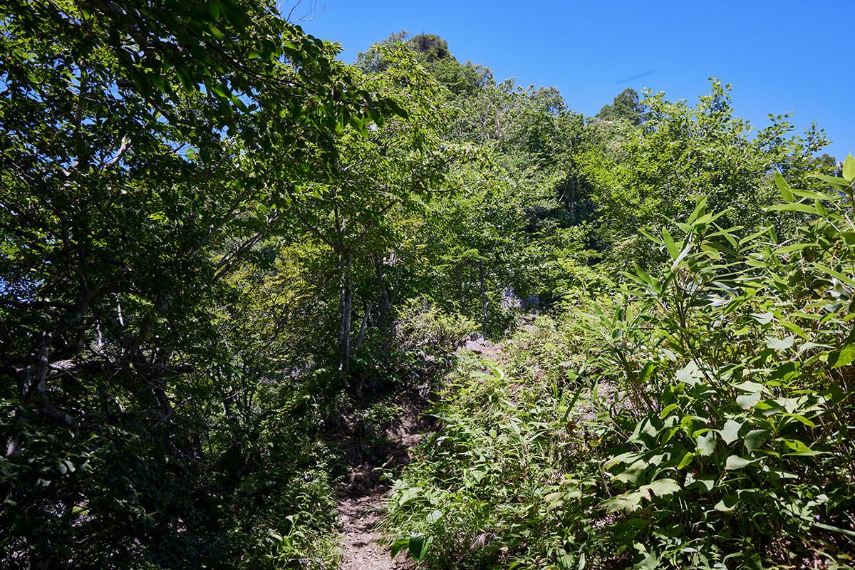 戸隠山-登った上に見える尖ったところが蟻の塔渡り