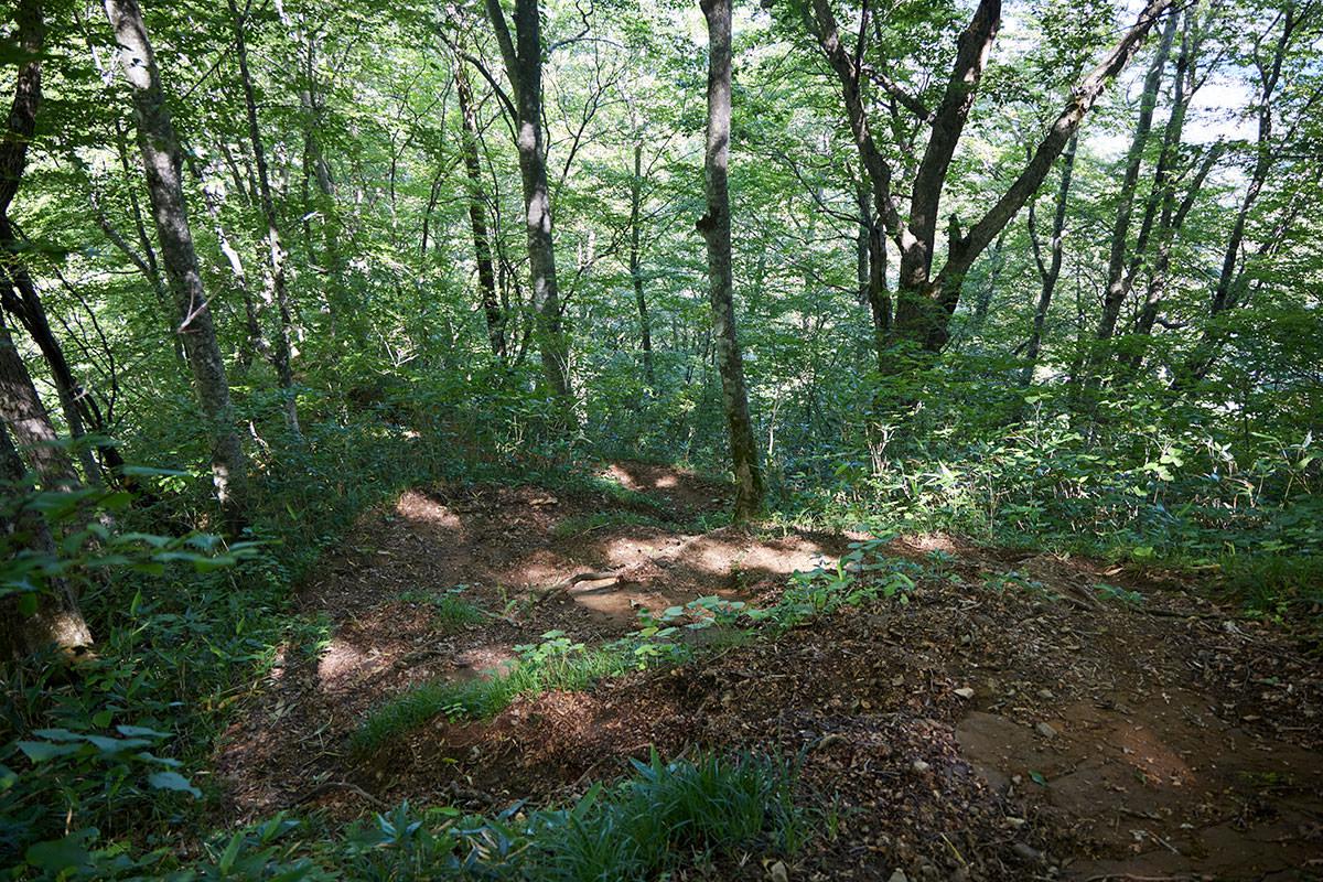 戸隠山-日影でも木に囲まれて暑い