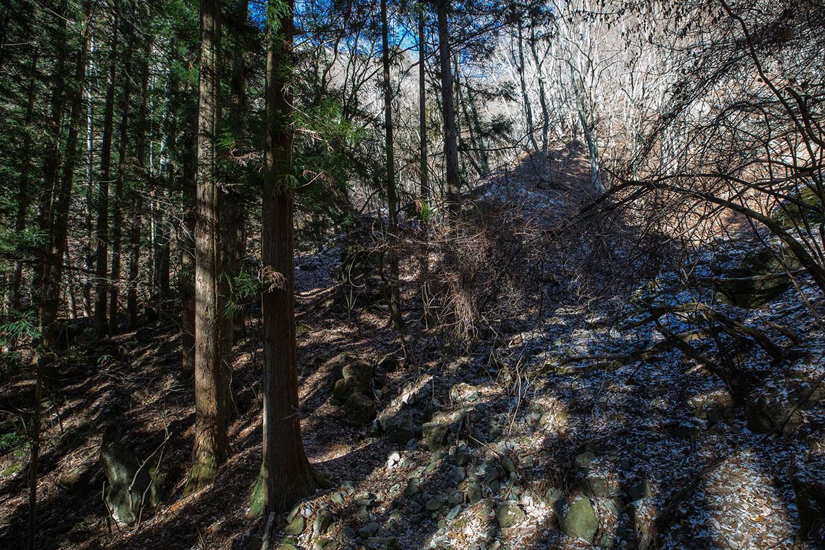 【独鈷山】登山百景-ここから急斜面に変わる